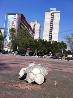 https://www.flickr.com/photos/ccutlatelolco/shares/37C734 | Las fotos de Centro Cultural Universitario Tlatelolco UNAM