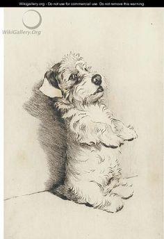"artist ""cecil aldin 