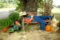 Fall Outdoor Decorations Scarecrow Laying Down On The Job Scarecrow Festival, Halloween Scarecrow, Fall Halloween, Scarecrow Ideas, Make A Scarecrow, Scarecrows For Garden, Fall Scarecrows, Fall Yard Decor, Fall Home Decor