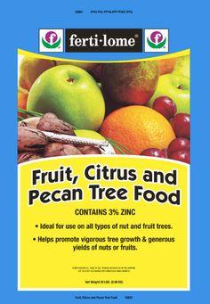 Peach Tree Care Fruit Tree Garden, Fruit Trees, Garden Pots, Potted Garden, Garden Ideas, Peach Tree Care, Peach Trees, Pecan, Gardening Tips