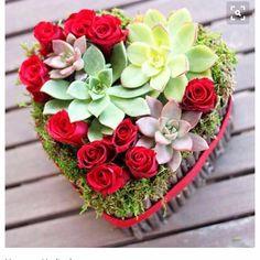 Hürriyet yazar kafede sevgili @eniselives bizi yazmış okumak isterseniz linki profilimizde günaydınlarrrr   #succa #sukulent #valentine #sevgililergünü #valentineday #happy #mutlu #love #sonsuzaşk #loveforever #happilyeverafter #succulent #succulove #succulents #hediye #gift by yeliz_halisdemir