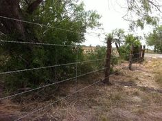 Hill Country Fence and Ranch — Ranch & Pipe Fencing