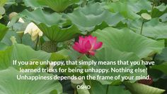 If you are unhappy, that simply means that you have learned tricks for being…