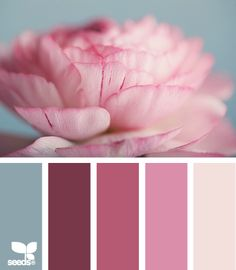 petalled tints - blue pink beige, maybe gray