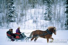 Go on a winter sleigh ride..  I think this is the most romantic thing you can do on a cold winter night...