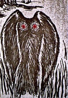 "The Mothman sightings began to be reported in 1966. The red-eyed winged creature was dubbed ""Mothman"". Sightings continued and fervor escalated over the following months, coinciding with a bewildering array of strange activity - including precognition, odd prophecies, UFO sightings and encounters with bizarre ""Men in Black."" It's one of the most puzzling and fascinating periods on record of paranormal activity focused in one geographic area. The creature itself has never been explained."