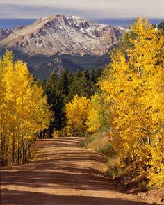 Pikes Peak in the Autumn. Love Colorado Springs area. Had dear friends that lived there and visiting was one of my favorite things to do. Now they live just down the street. Not nearly as scenic :-)