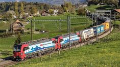 SBB Cargo orders 20 locomotives for Rhine-Alpine Corridor Transport In Europe, Freight Transport, Continental Europe, Swiss Railways, Rolling Stock, Swiss Alps, Corridor, Munich, Locomotive