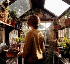 Greenhouse #garden #beauty
