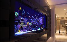 Purple Air Stone Bubble Aquarium Lighting Set (Manufactured with Super Bright LED chips and ideal for any size of Fish Tank, Aquarium or Water feature) Wall Aquarium, Aquarium Shop, Cichlid Aquarium, Home Aquarium, Tropical Aquarium, Aquarium Design, Marine Aquarium, Reef Aquarium, Aquarium Fish Tank