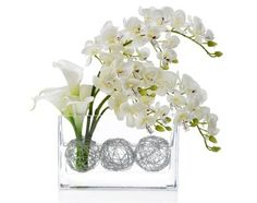 Modern and Contemporary Floral Design---Imagine black calla lilies with an orchid or event wisteria!!  I swear Wisteria is the devil of all plants--may be fitting for a ghoulish night...