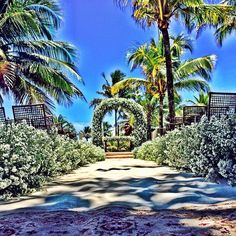 Caminho para a felicidade! #Ido #sim #wedding #beachwedding #festa #casamento #altar #praia #beach #day #buffet #rosaamarelacerimonial