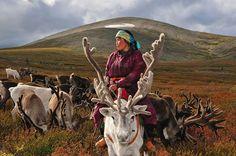 Découvrez le quotidien captivant des Dukha, un peuple mongole qui pourrait disparaitre