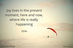 Joy lives in the present moment, here and now, where life is really happening. Isha Judd. Quotes