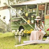 Alejandra-Arreglo-Rosas-Ext