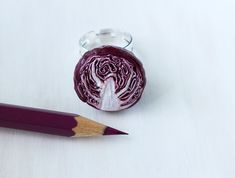 Olivia Vellani is a Toronto/Canada based visual artist, specializing in food art sculpture + photography. Polymer Clay Miniatures, Red Cabbage, Miniature Food, Food Art, Sculpture Art, Jewelry Art, Sculpting, Ring, Purple Cabbage