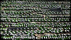 Where the old Mexico City taxis went. #mexicoimportarts