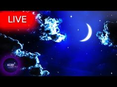 🔴 Deep Sleep Music, Sleep Meditation, Calm Music, Meditation Music, Study Music, Sleep MusicWelcome everyone! I hope your are having an amazing Day/Night! Get back loosen up your body take a deep breath and enjoy my music with the beautiful imagery from all around the world!   All music composed by Astro Universe - Relaxing Music  Deep sleep music - 🌟 Deep sleep music  If you need soft music or music to help you sleep and suffer regularly with insomnia  use this sleeping music as calm… Deep Sleep Music, Sleep Therapy, Take A Deep Breath, Meditation Music, Relaxing Music, Insomnia, My Music, Stress, Calm