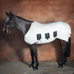 Sweet itch horse rugs from Snuggy Hoods!