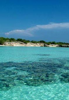 Las islas Los Tortuguillos (también conocidas como islas Las Tortuguillas o cayos es parte administrativamente de las Dependencias Federales de Venezuela.