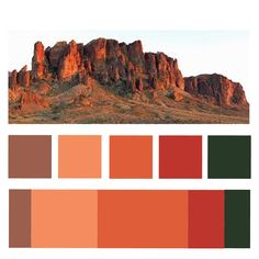 Alexis Schuknecht: #3 Menagerie Project - D4M - Color Palettes!