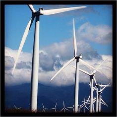 Windmills in Pagudpud!