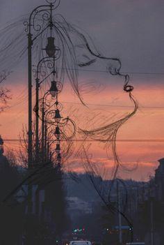 Sunset. Elsa Reig