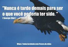 Resultado de imagem para frases aguia e a galinha