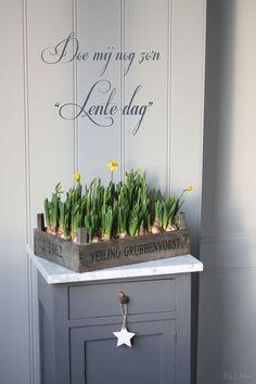 Die 10 originellsten Frühlingsdekorationen, auf die ich nie gekommen wäre. - DIY Bastelideen