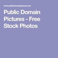 Public Domain Pictures - Free Stock Photos