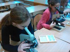 Mikroskopujemy