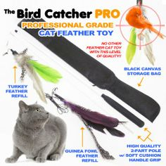 Get it now The Bird Catcher PRO!! Best Interactive Cat Toy Super Wand Fishing Pole Teaser with Two (2) Feather Refill Replacement Pack The Original Like Go Cat or Da Bird! Fun Dancer Dangler Chaser Charmer (For Indoor Kittens Young or Older Cats) To Run Play Chase! Good, Unique, Addictive Feline Exercise Training Guaranteed!