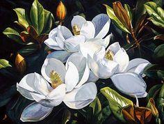 Magnolia by Laurin McCracken 40x30. Art, artwork, art prints.