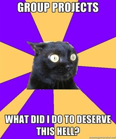 Anxiety Cat on Group Projects: I think my kids at school feel this way sometimes.