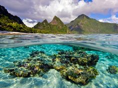 Ofu Island's coral reef lies within the 13,500 acres of National Park of American Samoa, the first U.S. national park in the Southern Hemisphere. | #FindYourPark #EncuentraTuParque