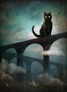 """Into the Night"" by Christian Schloe"