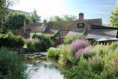 The Town Mills Andover Hampshire - simple pub food - really good Wednesday quiz night ...