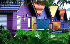 Colorful-Houses-Bahamas - beach, architecture, trees, colorful, nature, houses