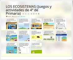 Science Area, Fifth Grade, Teaching Resources, June, Learning