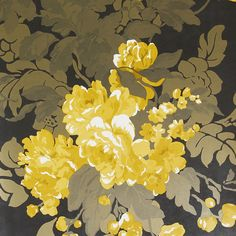 Osborne & Little Grand Tour Collection - Ginevra Wallpaper - W617008 ($83) ❤ liked on Polyvore featuring home, home decor, wallpaper, backgrounds, flowers, yellow, flower stems, paper wallpaper, osborne & little and contemporary wallpaper