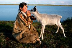 Alla, a Nenets girl, kisses one of her family's pet reindeer calves. Nadym Tundra, Yamal, Western Siberia, Russia.