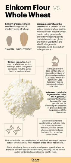 Einkorn flour vs. whole wheat - Dr. Axe http://www.draxe.com #health #holistic #natural