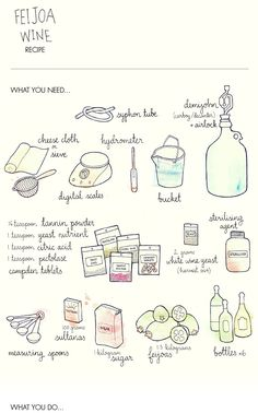 Make your own feijoa wine! Check out this great recipe, together with cute illustrations of the ingredients. Download the pdf.