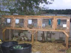 Rabbit hutch. For side of chicken coop. Bottom open for composting. Divide to two compartments for males & females.
