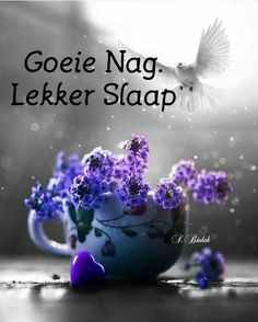 Goeie Nag, Christian Messages, Afrikaans, Good Night, Quotes, Cakes, Qoutes, Have A Good Night, Cake