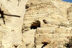 Una de las Cuevas de Ein Guedi, Israel. Israel, Caves, Gold