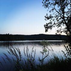 Mylla vann i Nordmarka