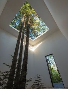 Garden architecture - Courtesy of Nature, 2013 Design Johan Selbing & Anouk Vogel Photo Louise Tanguay Green Architecture, Amazing Architecture, Architecture Courtyard, Architecture Jobs, Classical Architecture, Ancient Architecture, Sustainable Architecture, Sustainable Engineering, Architecture Definition