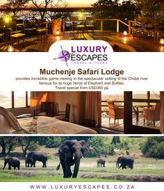Muchenje Safari Lodge provides incredible game viewing in the spectacular setting of the Chobe river famous for its huge herds of Elephant and Buffalo. Travel special from USD360 pp. for more www.luxuryescapes.co.za