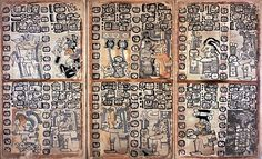 Madrid Codex, Mayan Text